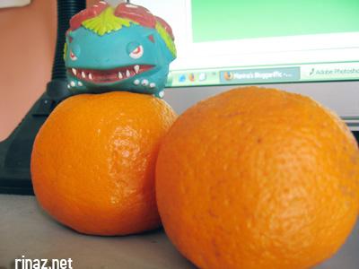 balbasaur protects rinaz gold orange