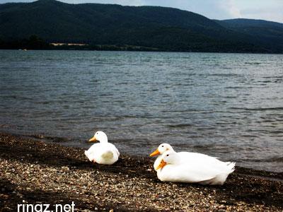 Lago Bracciano, Italy