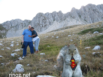 Super Squirrel at Terminillo
