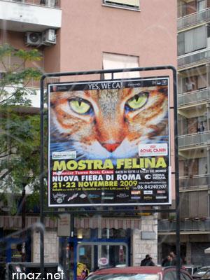 Billboard Magnificat 2009