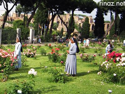 Roseto Comunale - rinaz.net