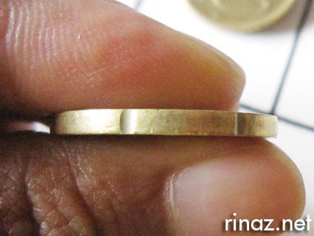rinaz.net euro coins