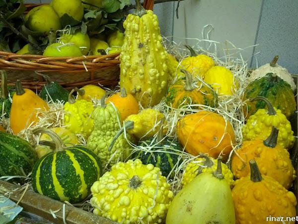 rinaz.net autumn